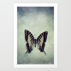 Vintage Butterfly 5 Art Print