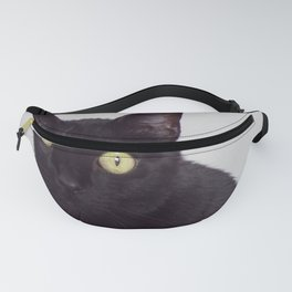 Pretty Kitty, Black Cat With Huge Green Eyes, Halloween Cat Fanny Pack