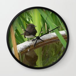Black Phoebe at the Fountain Wall Clock