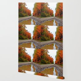 Dirt Road Puddle of Colors Wallpaper