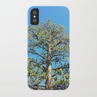 giants iPhone & iPod Cases featuring Giants by Nicole Roberts