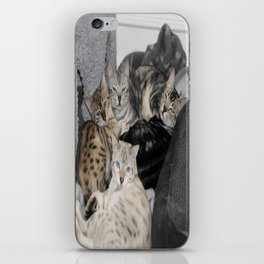 Bengal Cat Kitty Pile  iPhone Skin