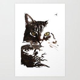 stare Art Print
