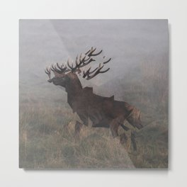 Deer Interrupted Metal Print
