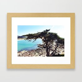 Overlooking Carmel By The Sea Framed Art Print