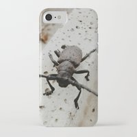 beetle iPhone & iPod Cases featuring Beetle by Bor Cvetko