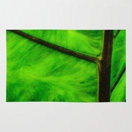 Leaf veins Rug
