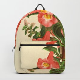 plectopoma Backpack