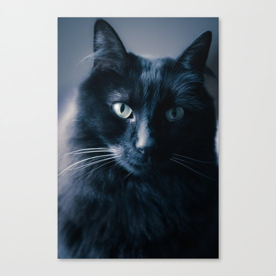 Very Serious Canvas Print