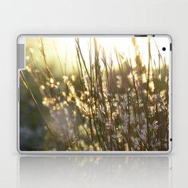 Highline Laptop & iPad Skin