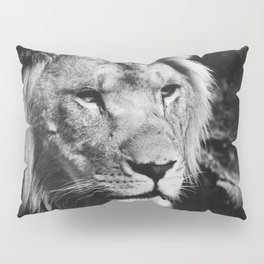 African Lion Black and White Photographic Print Pillow Sham