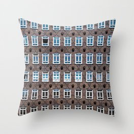Oh! these windows!!! Throw Pillow