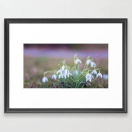 Lily of the valley Framed Art Print