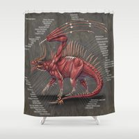 muscle Shower Curtains featuring Western Dragon Muscle Anatomy by Rushelle Kucala Art