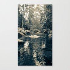 Goldstream Canvas Print