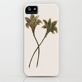 Indian Lily Daffodil iPhone Case