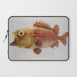 Puzzled Fish Laptop Sleeve
