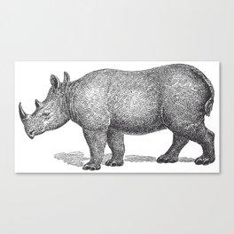 Vintage Rhinoceros Canvas Print