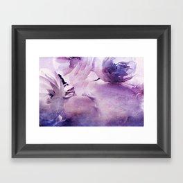 Where the wild Roses grow Framed Art Print