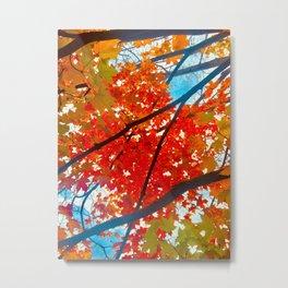 Fall leaves fun stuff Metal Print