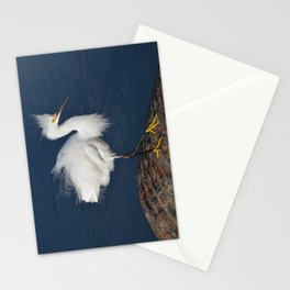 morning hair Stationery Cards