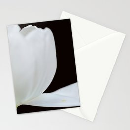 Artistic white tulip Stationery Cards