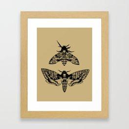 Antique Deaths Head Hawk Moth Pointillism Framed Art Print