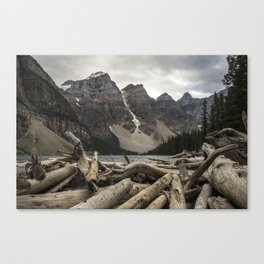 Bit of wood and some rock's Canvas Print