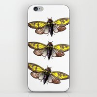 insect iPhone & iPod Skins featuring Insect by Freja Friborg