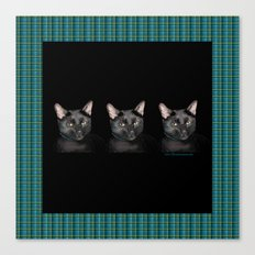Three black Cats on Plaid Background Canvas Print