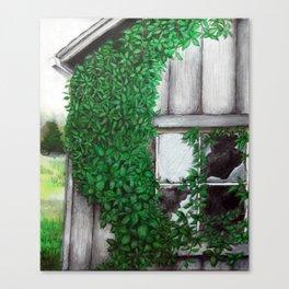 Beautiful Decay Canvas Print