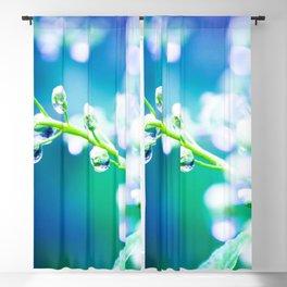 Twig Macro Close Up Blackout Curtain