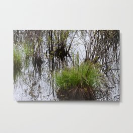 Wetlands 1 Metal Print