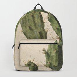 Herman Saftleven - Blooming prickly pear cactus (1683) Backpack