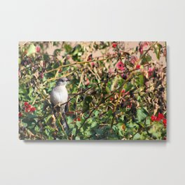 A Bird in the Bush Metal Print