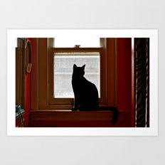 Salem in the window. Art Print
