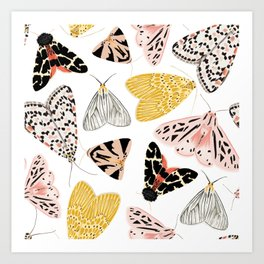 Moth's Diverse Beauty Pattern Art Print