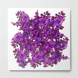 """Purple Hyacinth"" Garden Queen Floras Metal Print"