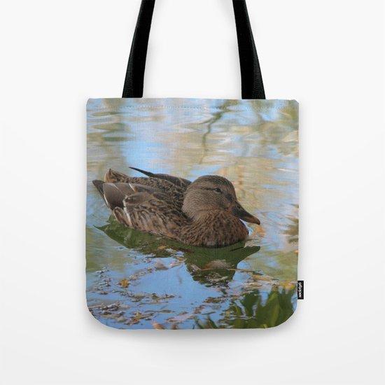 Mallard Duck by annemillbrooke