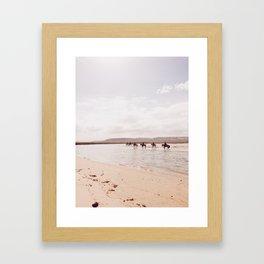 Horseback on the Beach Framed Art Print
