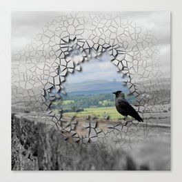 Cracked Up View Canvas Print