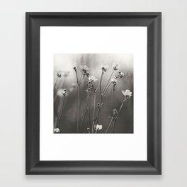 Blurry dreams Framed Art Print