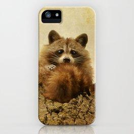 Transfixed iPhone Case