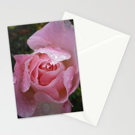 WATER DROPLETS ON PINK ROSE Stationery Cards