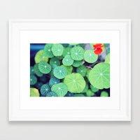 life aquatic Framed Art Prints featuring Aquatic Life by BURNEDINTOMYHE∆RT♥