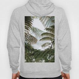 Tropical Vibes Hoody