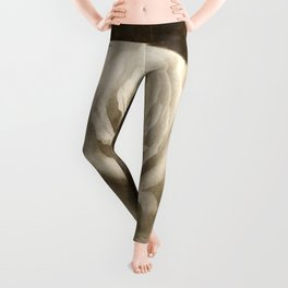 Pink Roses in Anzures 4 Antiqued Leggings