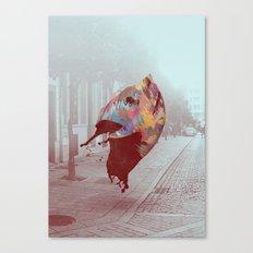 SM_4 Canvas Print