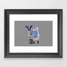 goat in the farm Framed Art Print