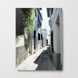 Whitewashed Metal Print
